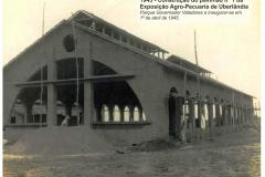 Construção Primeiro Pavilhão